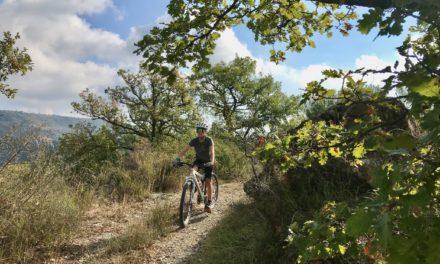 Strava, Komoot, Alltrails… Quelle application pour découvrir une région à vélo?